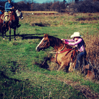 Social Stockwoman Performance Coaching for Western Riders